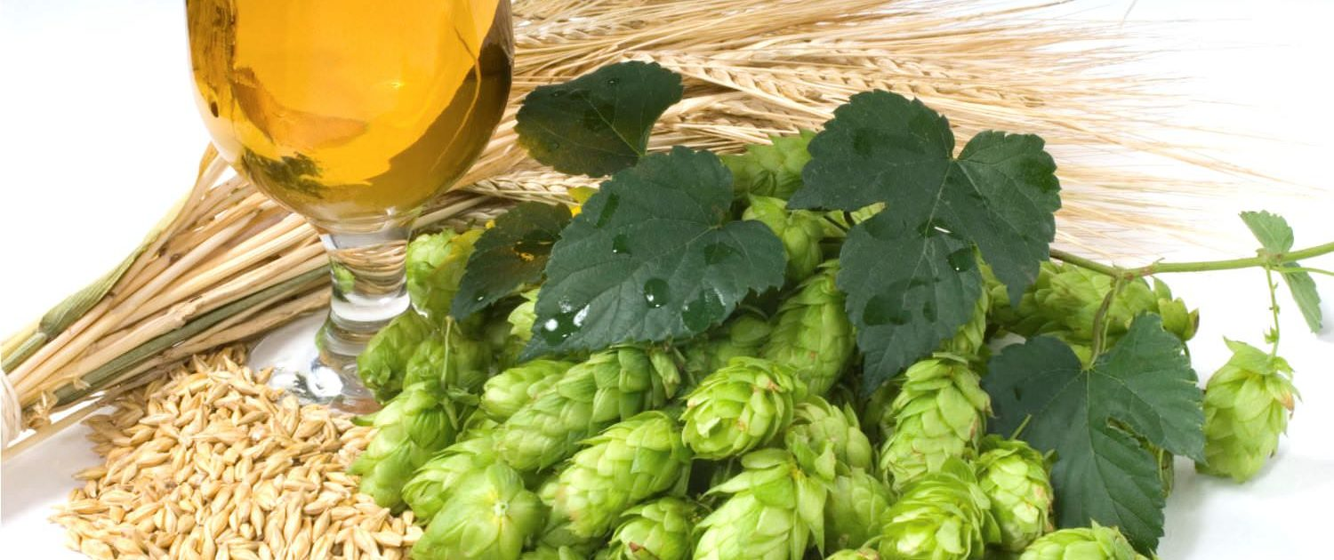 PREMIUM QUALITY HOPS | MALT | YEAST | SPICES. FOR THE PREMIUM BEER BREWING!